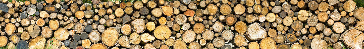 stacks of logs
